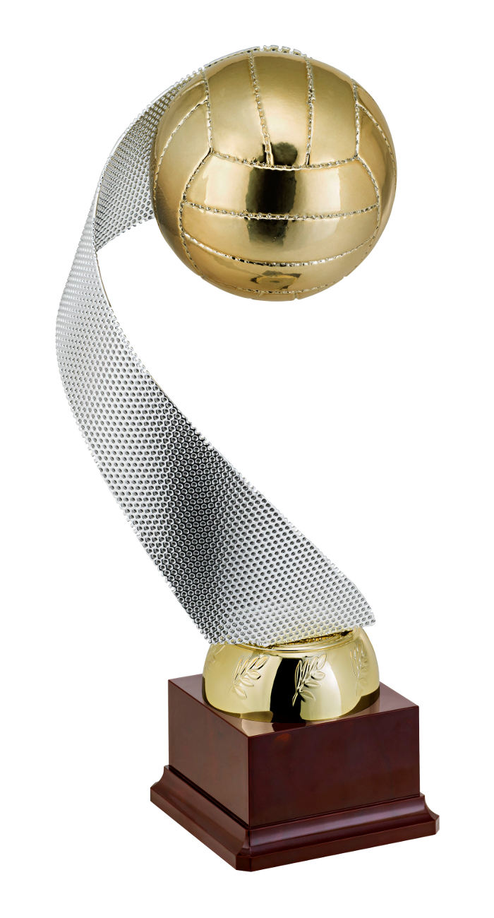 Volleyballpokal VB.13
